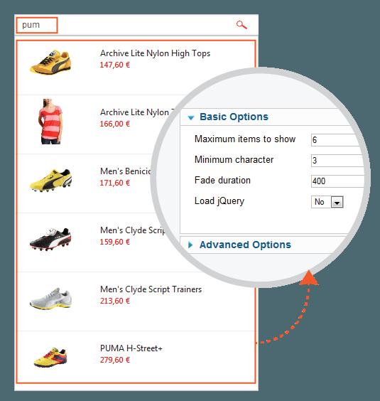 ajax-search-pro3.jpg