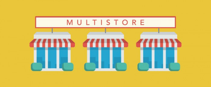 How to install Multistore WordPress theme into your hosting?