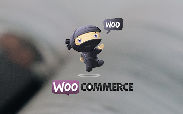 Compatible with WooCommerce