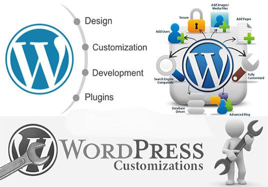WP Theme Installation and Customization