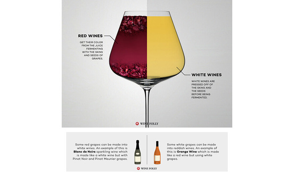 Red Wine vs White Wine: The Real Differences