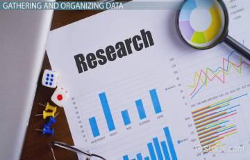 Data Organizer system