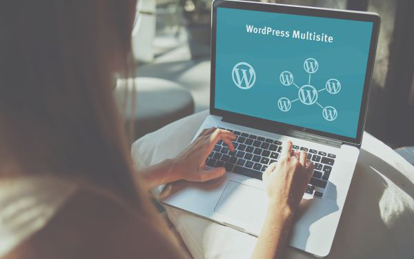 Support WordPress Multisite Network