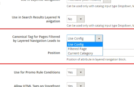 Magento Canonical tags
